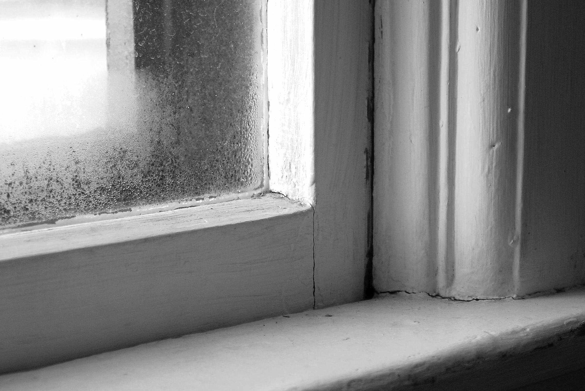 Humid-Window