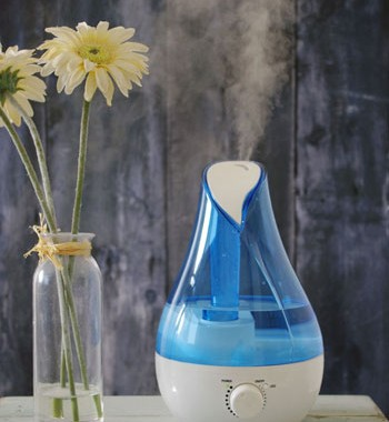 blue-rose-humidifier-3-500H